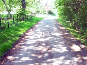 Road to the Stables